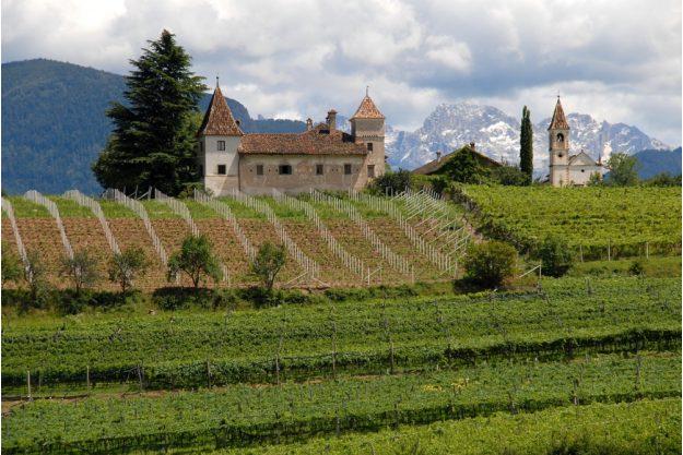 virtuelle Reise Südtirol Weinberge