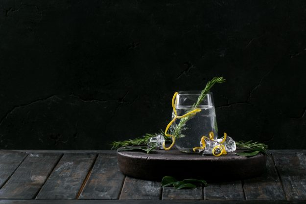 Gin Cocktailkurs zu Hause bester Gin Tonic