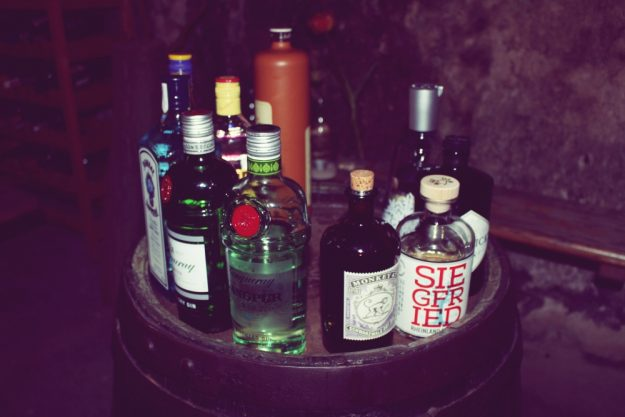Gin-Tasting Hannover – Gin-Auswahl