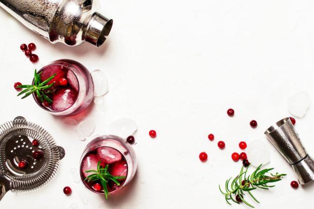 Gin Cocktailkurs zu Hause Gingenuss