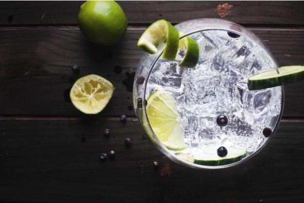 Gin Cocktailkurs zu Hause Gincocktails für zu Hause