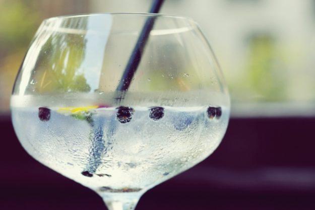 Gin-Tasting-Gutschein –Bombay Gin mit Wacholderbeeren