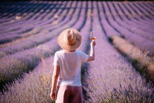 Genussreise Provence Genussreise Provence@Home für 2