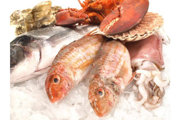 Fisch- und Meeresfruechte-Kochkurs Dresden –  frischer Fisch