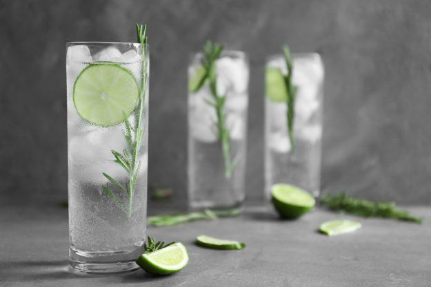 Gin-Tasting Dresden – Gin mit Gurke