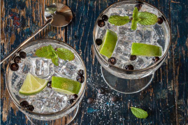 Gin-Tasting Dresden –Gin Wacholder