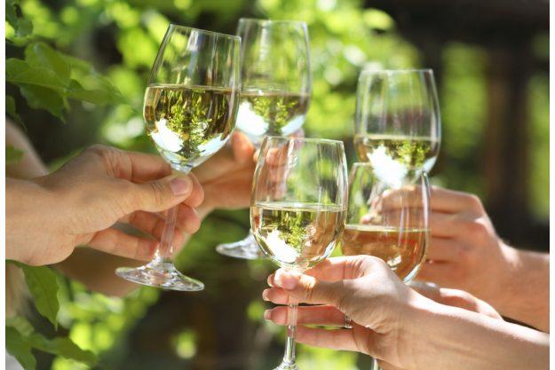 Weinprobe in Radebeul – Anstoßen mit Weißwein