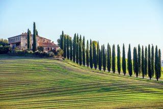 Virtuelle Reise Toskana Genussreise in die Toskana für 2