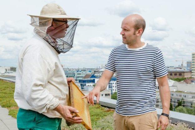 Honig-Verkostung – Honig verkosten