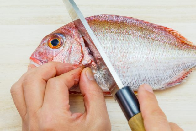 Fisch-Kochkurs München –Fisch zubereiten