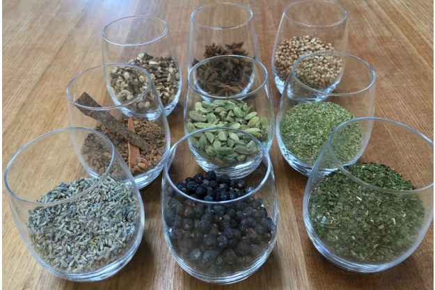 Gin-Tasting-AT-Home-Botanicals