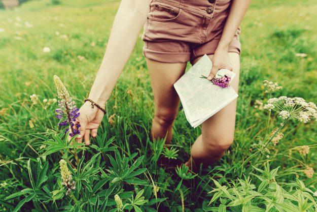 Kräuterwanderung München – Frau sammelt Wildpflanzen