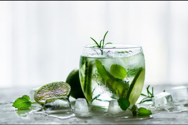 Gin-Seminar Bremen – Gin mit Gurke und Limette