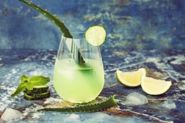 Gin-Tasting-Gutschein –Gin Mare mit Aloe-Vera-Deko
