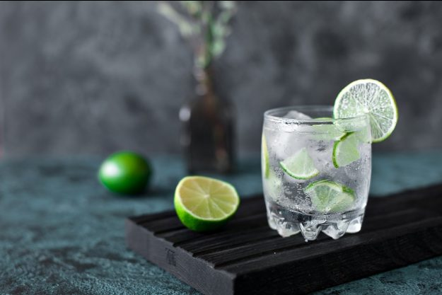 Gin-Virtuelles Gin-Tasting – Gin Tonic mit Limette