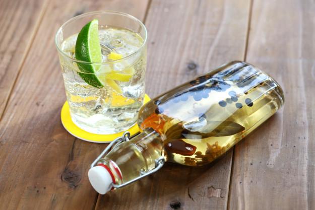 Gin selber machen Hamburg – selbst aromatisierter Gin