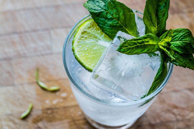 Gin-Tasting Hamburg – Gin mit Minze