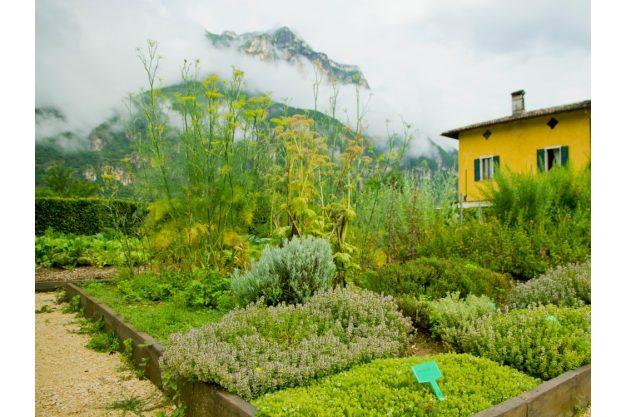 virtuelle Reise Südtirol Krätuergarten