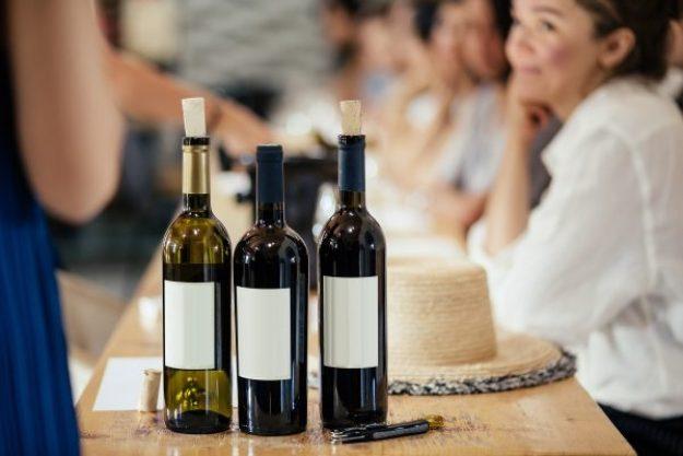 Weinseminar Hamburg – Freunde trinken Wein