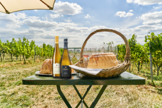 Weinwanderung online mit Essen Picknick im Weinberg@Home