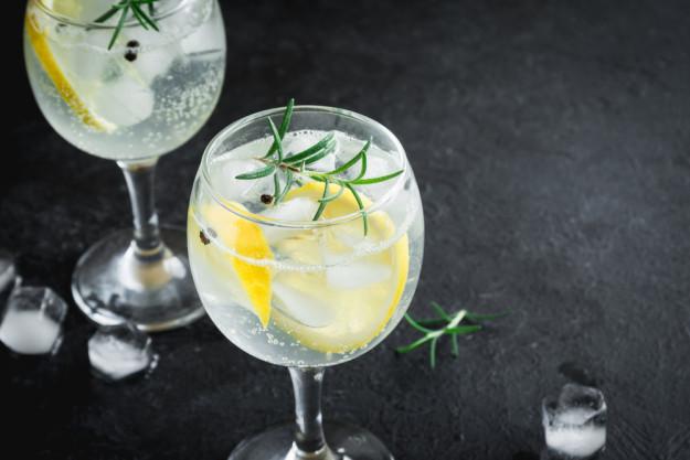 Gin-Tasting Karlsruhe – Gin Tonic im Glas