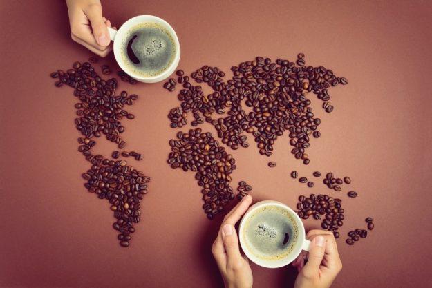 Barista-Kurs Bonn – entdecke den Kaffeegürtel