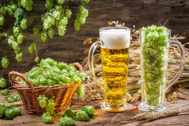 Bavarian cooking class München - beer and hops