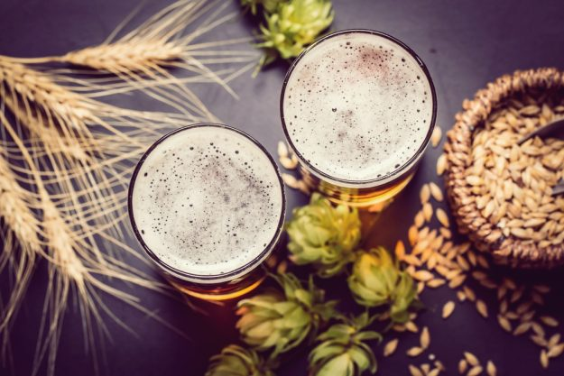 Bierprobe Frankfurt – Bier und Hopfen