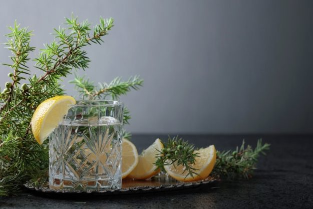 Gin-Tasting Berlin Distillery