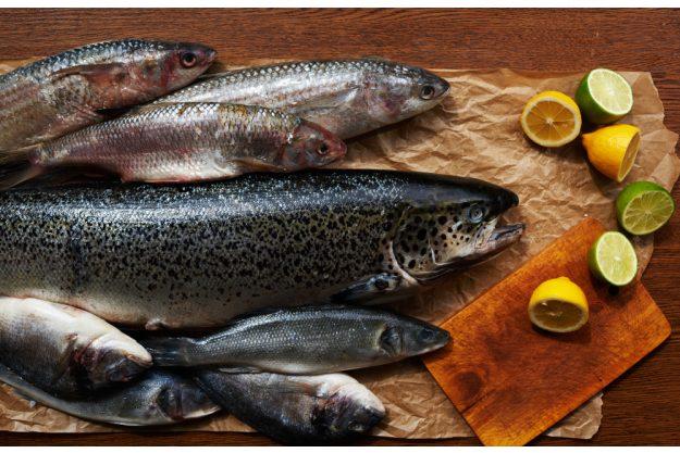 Fisch-Kochkurs Frankfurt – Loup de Mer