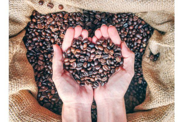 Geschenkgutschein Baristakurs – eine Handvoll Bohnen