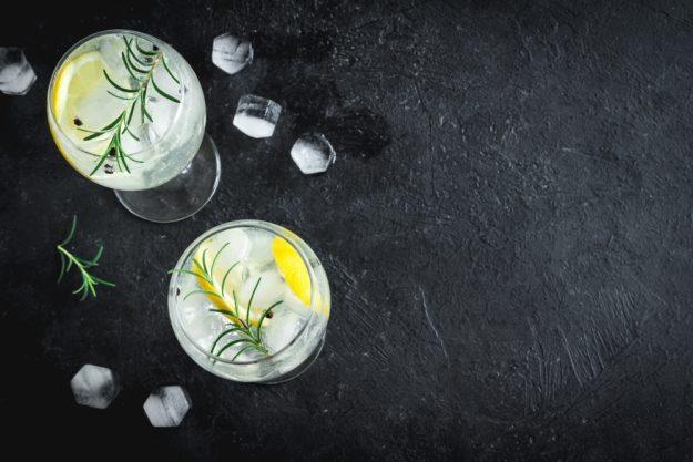 Gin Cocktailkurs zu Hause Gin Tonics