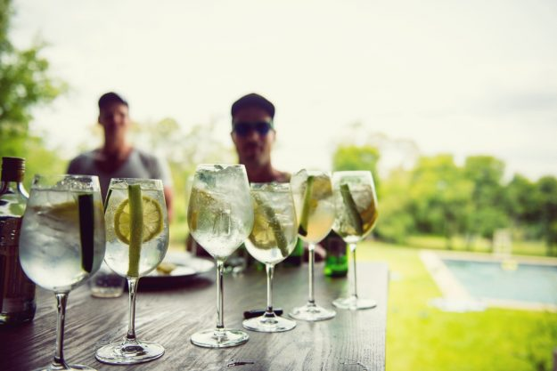 Gin-Seminar Hannover – Gin-Cocktails genießen