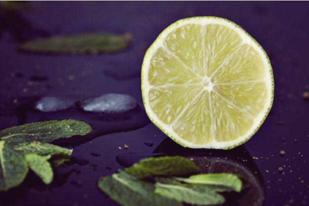 Gin-Seminar Hannover – Limette mit Gin