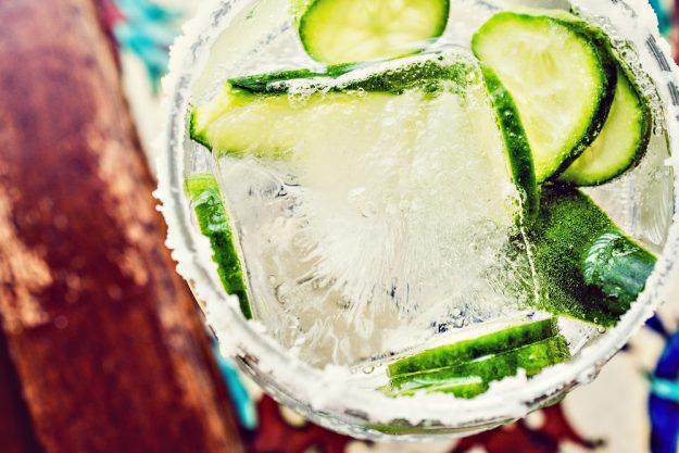 Gin-Seminar Koblenz –Klassicher Gin-Tonic mit Gurke