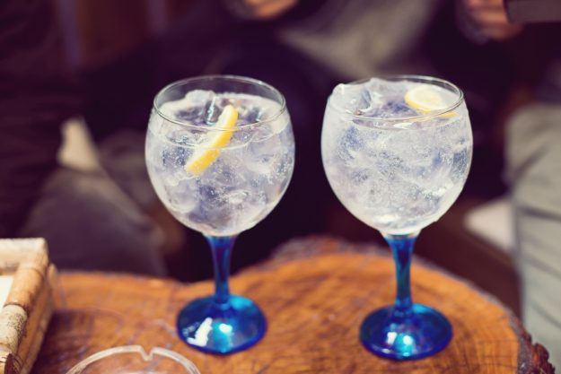 Gin-Seminar Koblenz –Fertige Gin-Tonic mit Zitronenscheiben