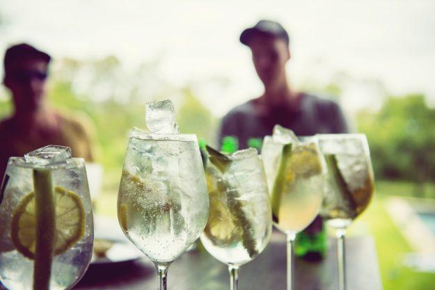 Gin-Seminar Mannheim – Gin Tonic mit Limette und Gurke