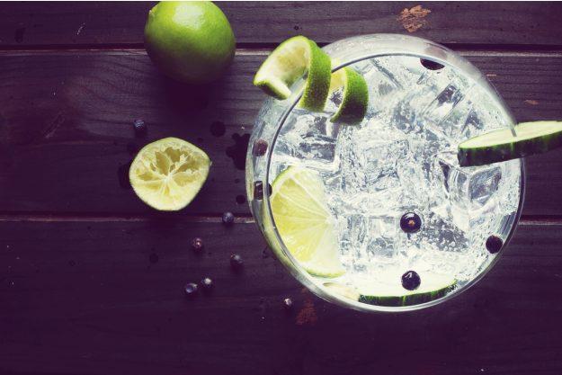 Gin-Seminar Mannheim – Gin mit Wacholderbeeren und Limettenzesten