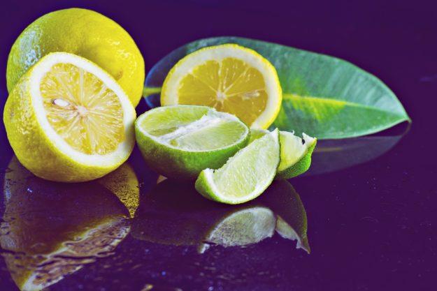 Gin-Seminar Mannheim – Limetten und Zitronen