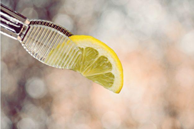 Gin-Seminar Mannheim – Frisch geschnittene Zitronenspalte