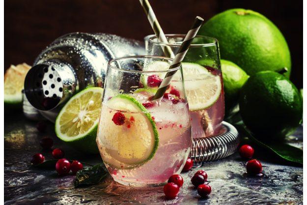 Gin-Tasting Berlin –Bombay Sapphiere Gin mit Cranberry