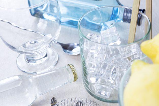 Gin-Tasting Dresden – glasklarer Gin