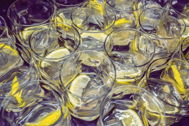 Gin-Tasting Frankfurt-Hofheim – viele Gin-Drinks für die Degustation