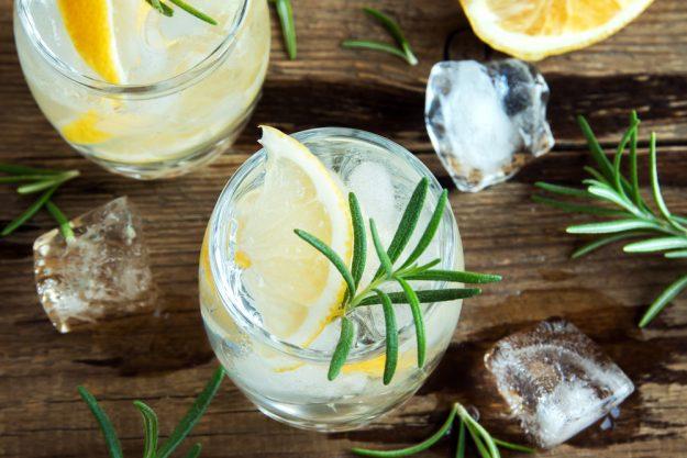 Gin-Tasting Hamburg – Gin mit Rosmarin und Zitrone