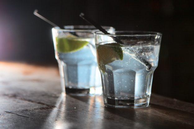 Gin-Tasting Hamburg – Gin Tonic