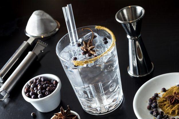 Gin-Tasting Köln – Gin mit Botanicals