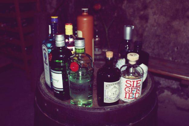 Gin-Tasting Mannheim – Ginflaschen