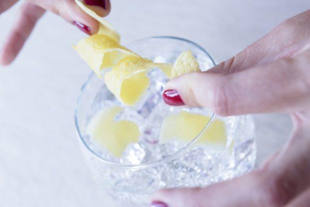 Gin-Tasting Stuttgart – Gin mit Zitrone