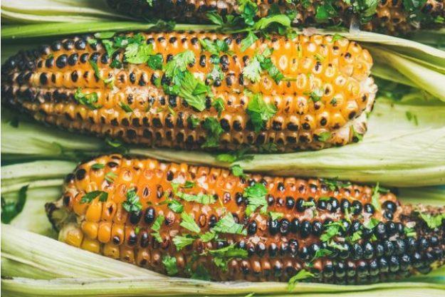 Zum Grillmeister werden –Maiskolben