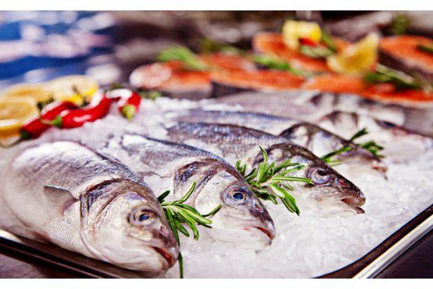 Italienischer Kochkurs München - Fisch auf Eis